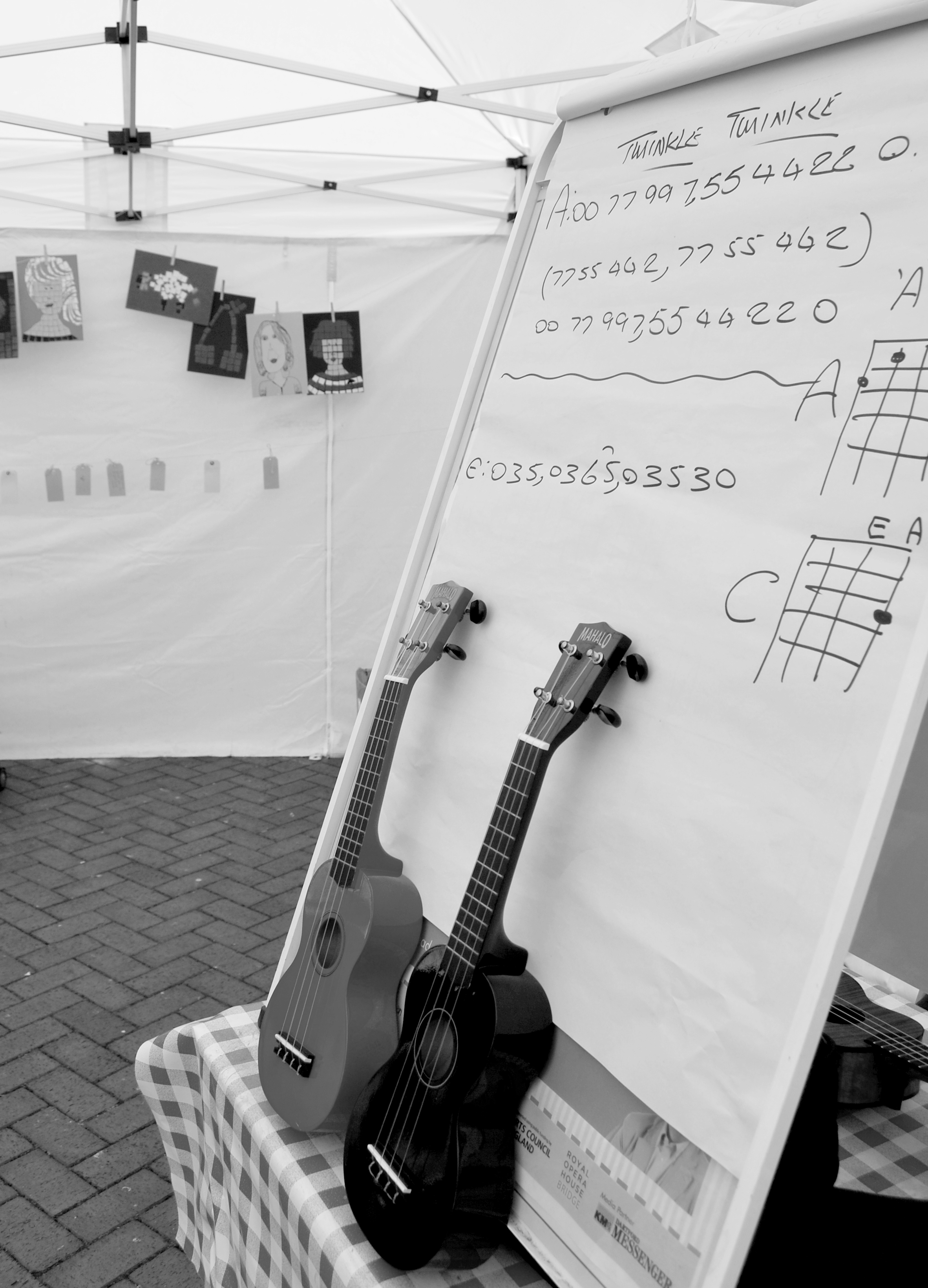 Ready for the next group of eager Ukelele students